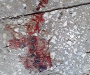 Нижнетуринец насмерть забил соседа